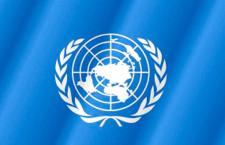 Общественные слушания о политике ООН в отношении семьи